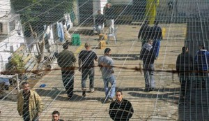 Palestinian prisoners in Israeli Jails biding their time waiting until that moment when they can continue to kill Jews. Do they look terribly oppressed to you here. They can gather, socialize, clean their clothes, eat Halal, read the Quran. Any thing they want to do they can except walk out of the prison. Since Israel did not kill of that terrorist in Jerusalem the other day  he will join them as soon as he is able. Photo courtesy of en.alalam.org